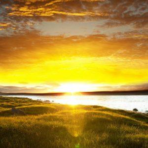 Tranh ánh bình minh trên đồng cỏ