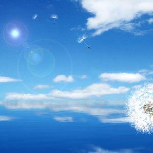 Tranh trang trí bầu trời xanh