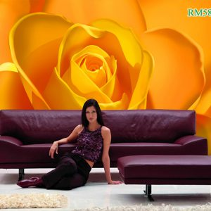 Tranh dán tường hoa hồng vàng