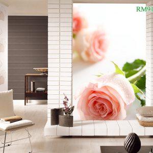 Tranh dán tường hoa hồng trong trắng tinh khôi